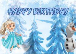 Frozen Princess - Elsa Banner